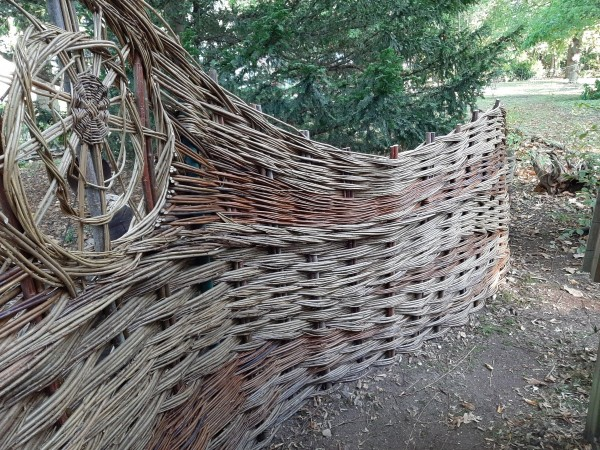 fence, Essex,Weaving, Little Baddow. spiral