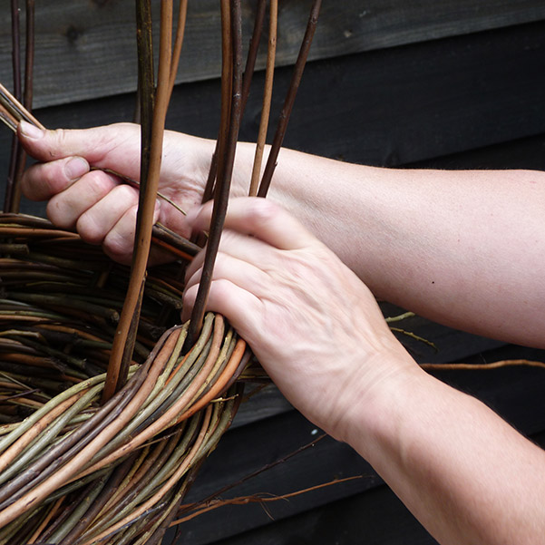 Willow Weaving Workshops in Essex, Suffolk and Norfolk