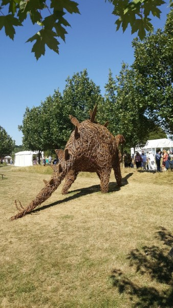 Stegasaurus at Hyde Hall Gardens. willow weaving, debhart.co.uk