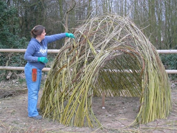 community workshop Shenfield.Working with living willow creating structures that grow