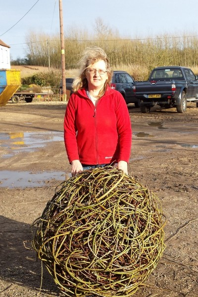 willow sculpture workshop at Ashman's Farm in Kelvedon Essex