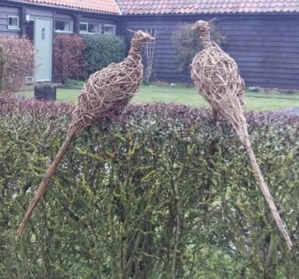 willow pheasant, Braintree, Essex, weaving